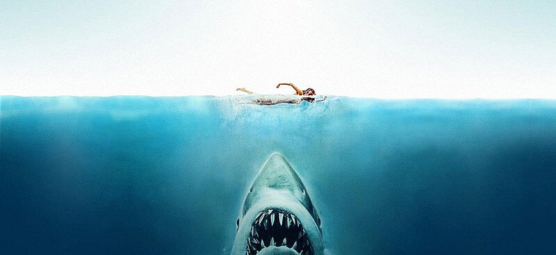Shark Attack Background